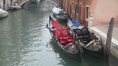Gondolas in Venice at the pier at the channel Stock Video Footage