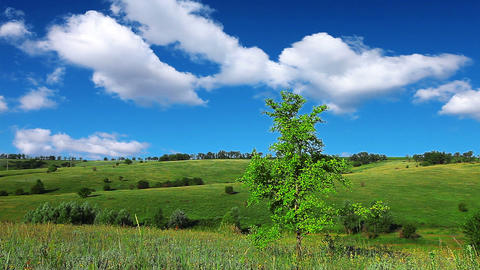 spring landscape Stock Video Footage