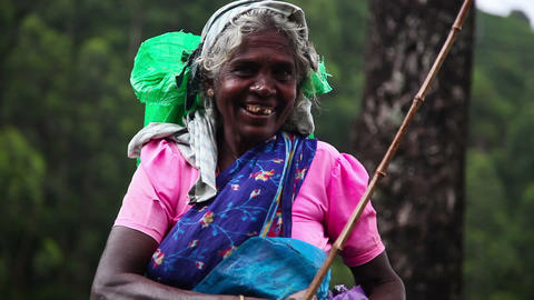 Portret of indian woman Footage