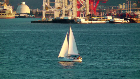 Sailing Boat in Seattle Stock Video Footage