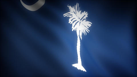Flag of South Carolina Stock Video Footage