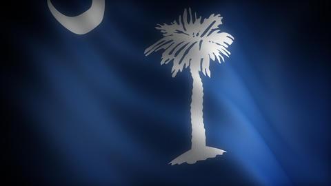 Flag of South Carolina Stock Video Footage