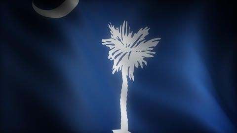 Flag of South Carolina Animation