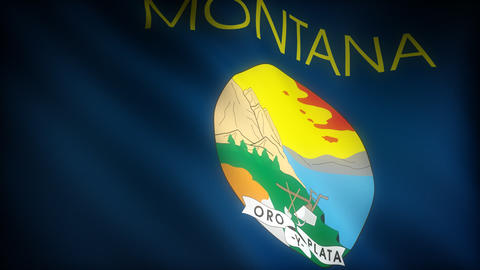 Flag of Montana Stock Video Footage