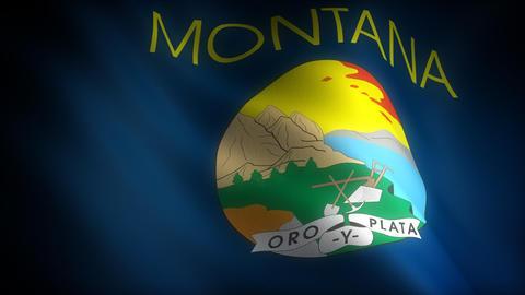 Flag of Montana Stock Video Footage