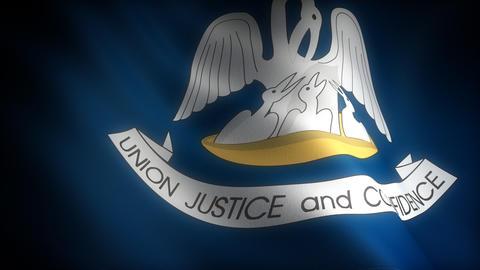 Flag of Louisiana Stock Video Footage