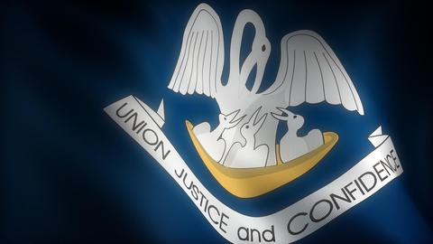 Flag of Louisiana Animation