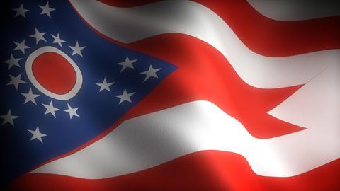 Flag of Ohio Stock Video Footage