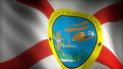 Flag of Florida Stock Video Footage