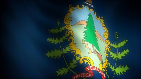Flag of Vermont Stock Video Footage