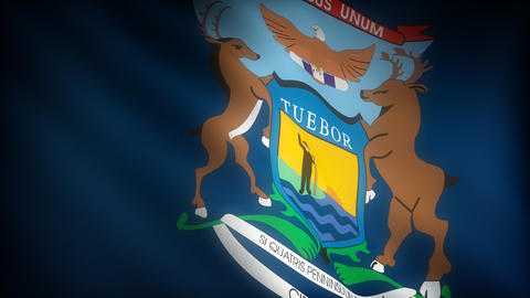 Flag of Michigan Stock Video Footage