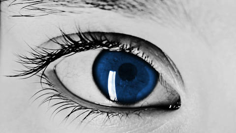 Eye Close-up Shot Blue Stock Video Footage