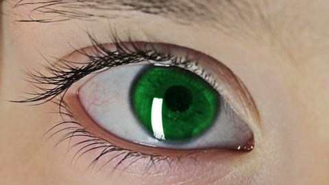 Eye 8110 Green stock footage