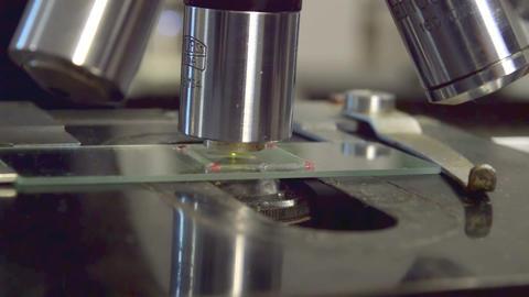 Microscop Footage