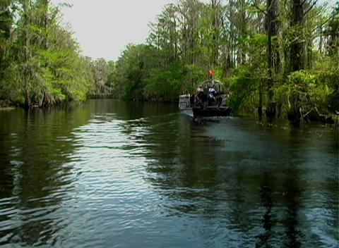 View from an Airboat (12) Footage
