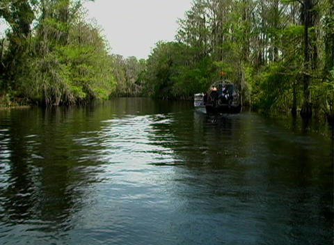 View from an Airboat (12) Stock Video Footage