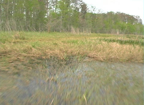 View from an Airboat (26) Stock Video Footage