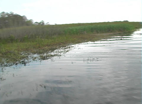 View from an Airboat (26) Footage