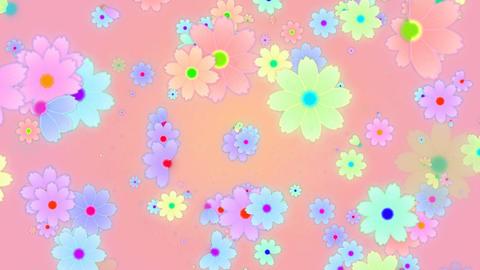 Cosmos HD 02 mov cosmos flower flies Stock Video Footage