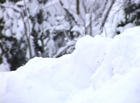 Snowy Landscape 4 Footage