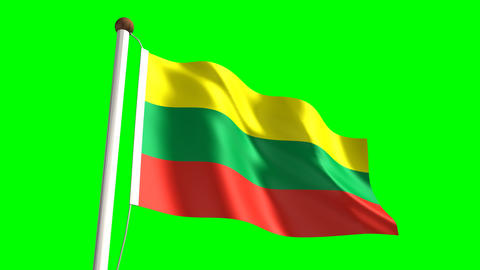 Lithuania flag Stock Video Footage