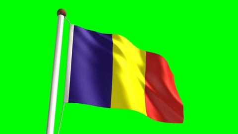 Romania flag Stock Video Footage