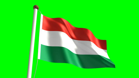 Hungary flag Stock Video Footage