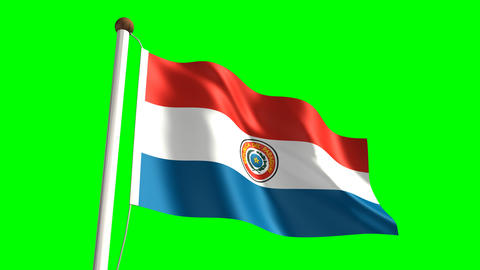 Paraguay flag Stock Video Footage
