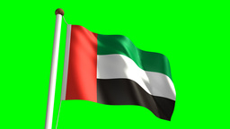 United Arab Emirates flag Stock Video Footage