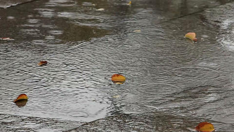 rainy day Footage