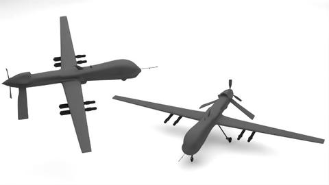 Predator Type Drones 3D Model
