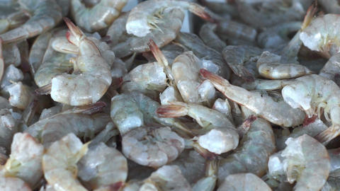 Fresh Shrimp Seafood Dolly stock footage