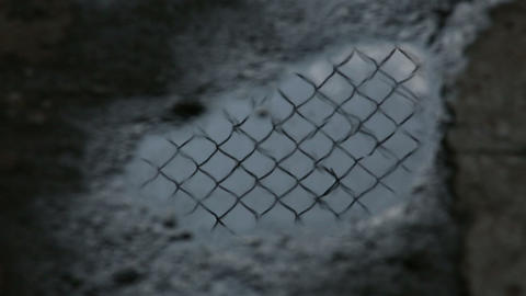 Prison bar is reflected in the puddle Footage