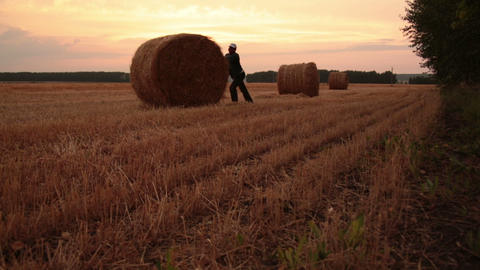 Rolls of hay in the field Stock Video Footage