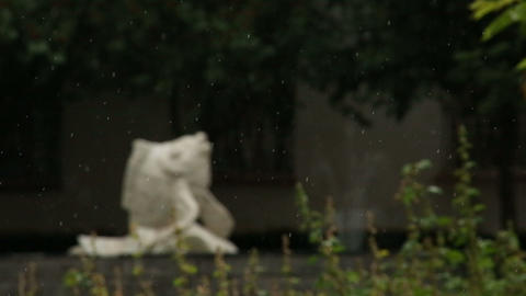 The snow on the background of green plants Stock Video Footage