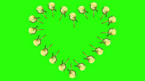 4K. Frame of blooming roses time-lapse heart with Stock Video Footage