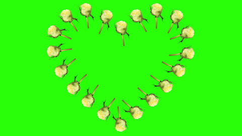 Frame of blooming roses time-lapse heart with gree Stock Video Footage