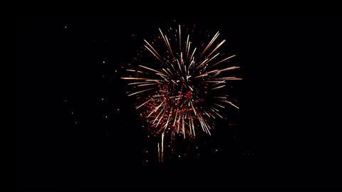 Fireworks Celebration Stock Video Footage