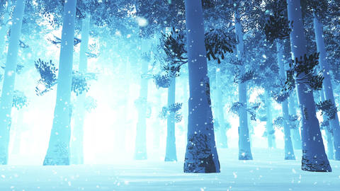 4 K Deep Winter Forest 2 snowing Stock Video Footage