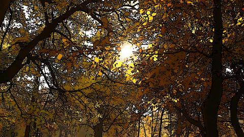 Beautiful Autumn Scene Comic Marvel 1 Stock Video Footage
