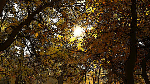 Beautiful Autumn Scene Comic Marvel 1 Footage