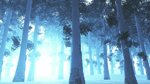Deep Winter Forest 2 Animation