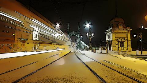 Liberty Bridge at Night Budapest Hungary Timelapse Footage