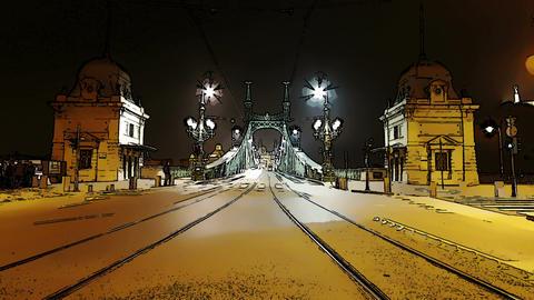 Liberty Bridge at Night Budapest Hungary Timelapse Stock Video Footage