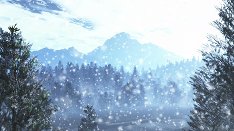 Mysterious Northern Forest Winter 4 snowing Stock Video Footage