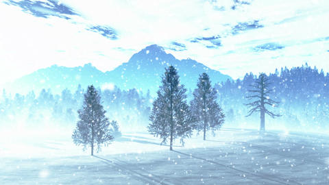 Mysterious Northern Forest Winter 5 snowing Stock Video Footage