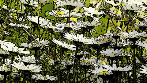 Summer Flowers Comic Marvel 1 Stock Video Footage
