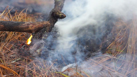 Bushfire stock footage