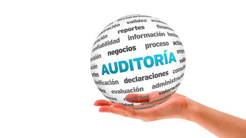 Audit word sphere (In Spanish) Stock Video Footage