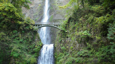 Bridge at Multnomah Falls Stock Video Footage